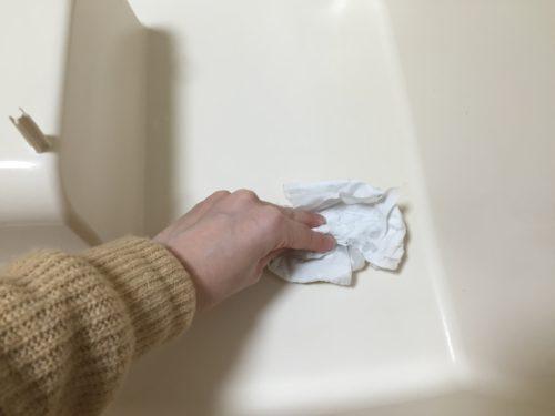 ペット用消臭剤 トイレ掃除 猫 砂