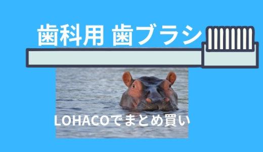 【まとめ買い】LOHACOなら歯科用歯ブラシ1本37円!おすすめ