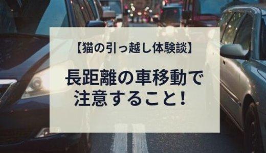 【猫の引っ越し】長距離を車で移動して分かった注意点!
