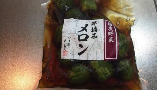 【変わり種】メロンの漬物に驚き! 茨城・静岡に行ったら必ず買うリスト入り決定
