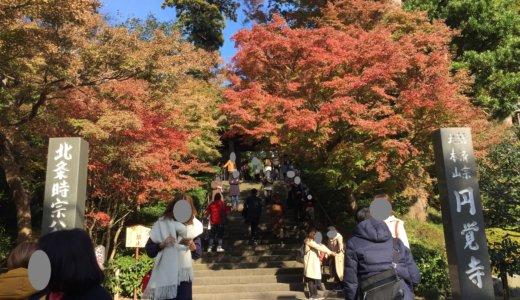 【2018年現在】鎌倉・円覚寺の紅葉を見てきました!
