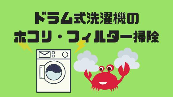 ドラム式洗濯機 Panasonic フィルター掃除 ホコリ 目詰まり 排水 隙間