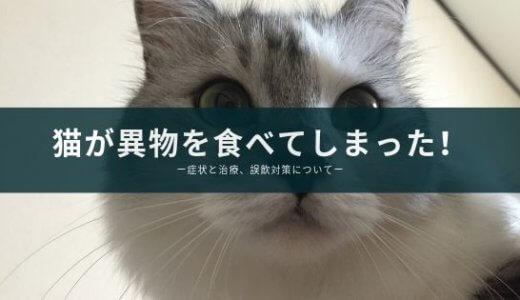 【猫が異物を食べた】腸閉塞? 症状と治療、誤飲を防ぐ対策の実体験を紹介!