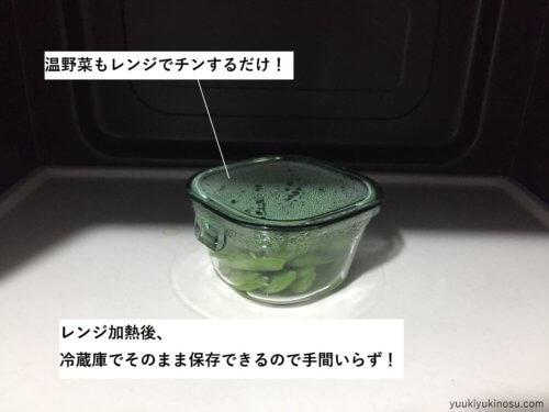 ガラス タッパー 耐熱ガラス 保存容器 iwaki イワキ 角型 200ml 電子レンジ