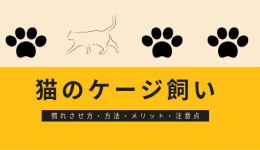 ケージ飼いで猫も人間も幸せ!慣らし方やメリット、注意点を紹介