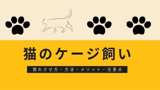 猫の ケージ飼い おすすめ 慣れさせ方 方法 メリット 注意点 レイアウト 夜 置き場所 トイレ やってはいけないこと 必要