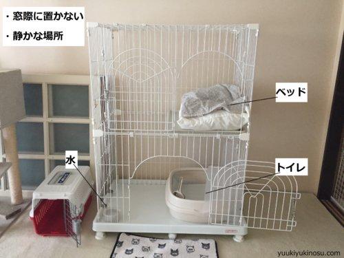 猫の ケージ飼い おすすめ 慣れさせ方 方法 メリット 注意点 レイアウト 夜 置き場所 トイレ やってはいけないこと 必要 留守番 寝る 工夫