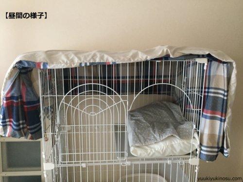 猫の ケージ飼い おすすめ 慣れさせ方 方法 メリット 注意点 レイアウト 夜 置き場所 トイレ やってはいけないこと 必要 留守番