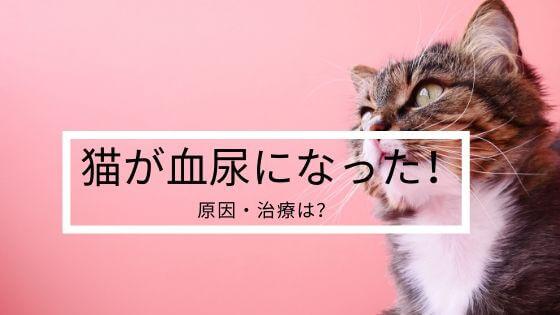 猫 血尿 ストレス 頻尿 病気 メス 治療 薬 繰り返す 尿路結石 結石症 膀胱炎 餌 原因 療法食 出たり出なかったり