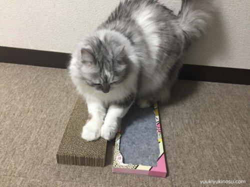 100均 ダイソー 猫 爪とぎ 布製 段ボール製  またたび 使い方