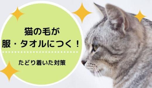 【猫の毛】服・タオルにつかない対策!ストレスフリーな生活にしよう