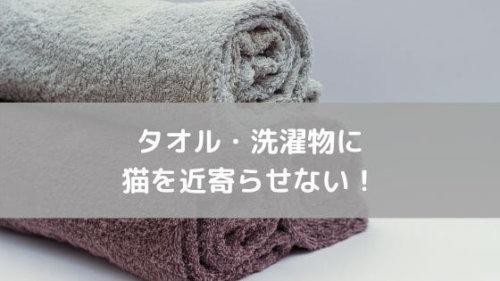 猫 ペット 毛 抜け毛 対策 洋服 衣類 部屋 洗濯 タオル 取る