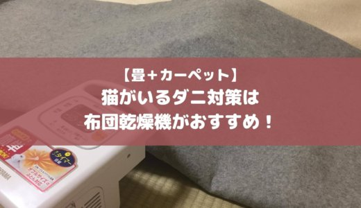 【畳+カーペット】猫がいるダニ対策は布団乾燥機がおすすめ!