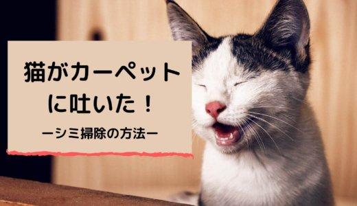 【猫】カーペットに吐いた!シミの掃除方法を紹介