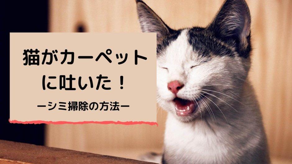 猫 カーペット 吐いた ゲロ 嘔吐 吐き戻し シミ 掃除 消し方 オキシクリーン ニオイ 消臭