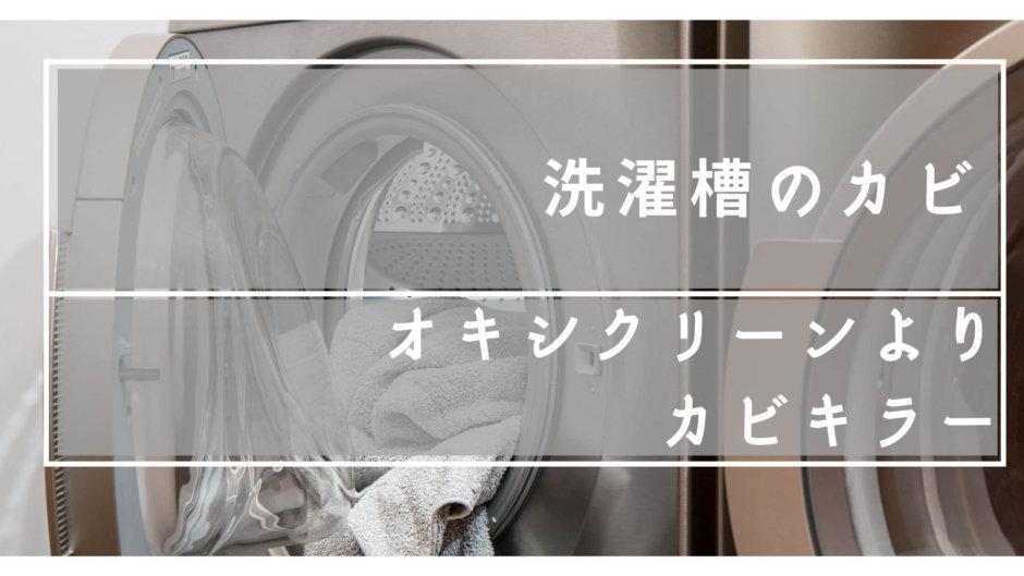 洗濯槽 カビ掃除 オキシクリーン 塩素系 クリーナー ドラム式 パナソニック 槽洗浄コース カビキラー ほこり 使い方 効果