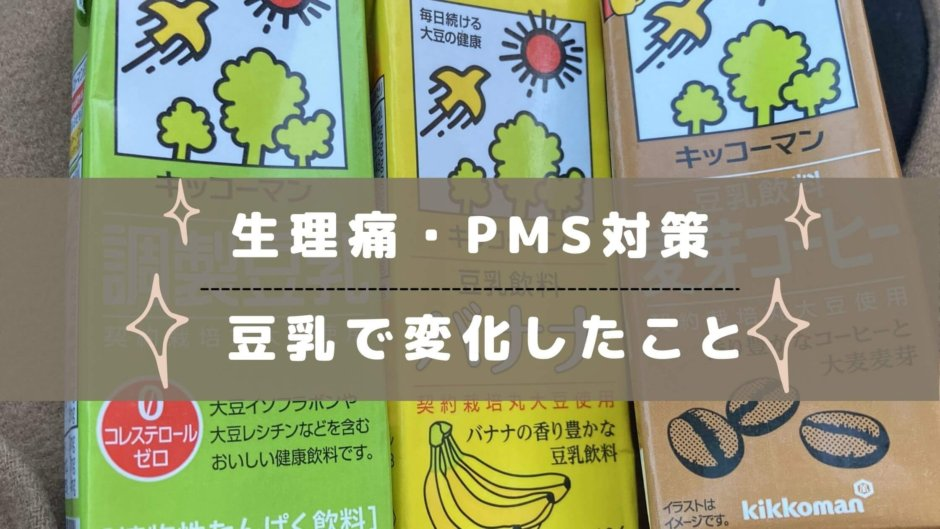 豆乳 PMS 生理 対策 豆乳粉 豆乳パウダー iHerb コスパ soymiilkpowder ソイミルクパウダー
