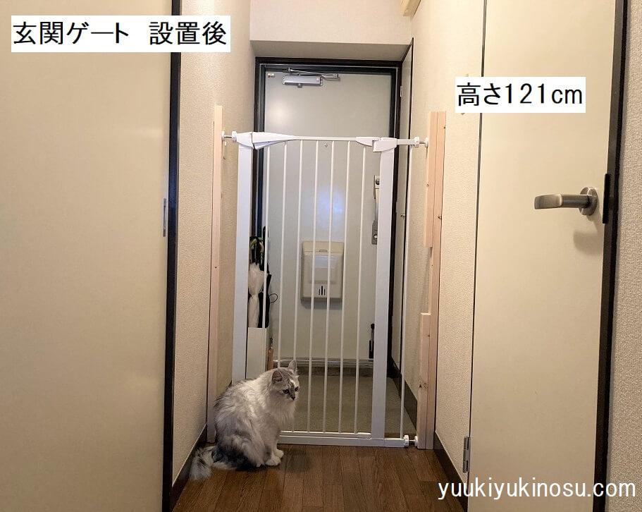 猫 玄関 ゲート 高さ 120cm おすすめ 安い 脱走防止 賃貸 つっぱり式 扉
